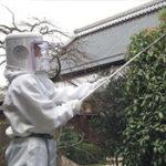 ハチ駆除システム